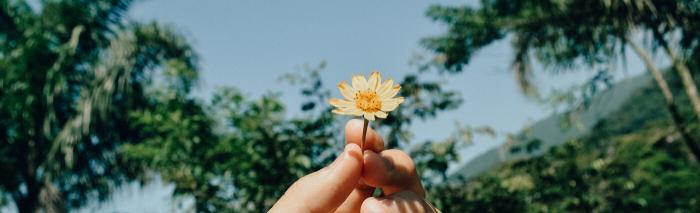 5 manieren om dankbaar te zijn